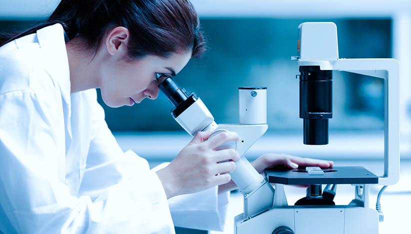 studos clinicos microscopio