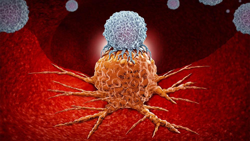 Ilustração digital com conceito de célula de defesa sobre um tumor.